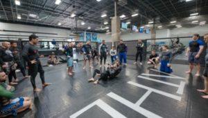 Brazilian jiu jitsu training for beginners