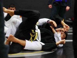 cobrinha brazilian jiu-jitsu houaston